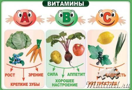 У каждого витамина своя роль